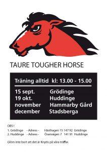 Tougher_horse_Affisch